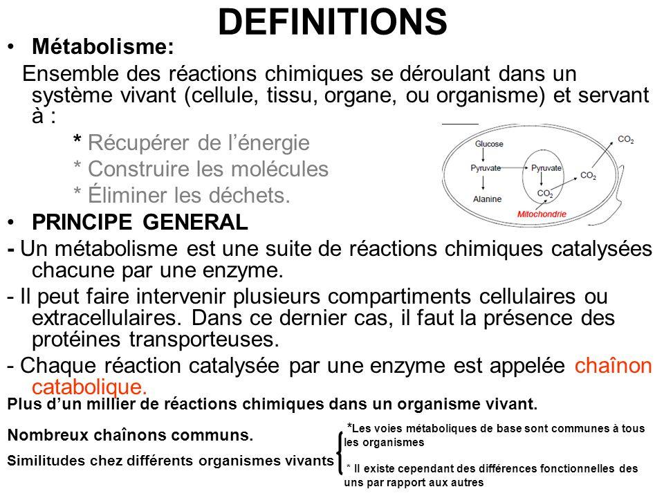 DEFINITIONS Métabolisme: Ensemble des réactions chimiques se déroulant dans un système vivant (cellule, tissu, organe, ou organisme) et servant à : *