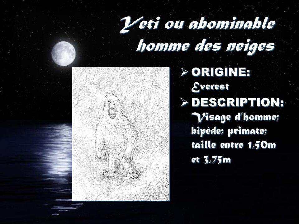 Yeti ou abominable homme des neiges ORIGINE: Everest DESCRIPTION: Visage dhomme; bipède; primate; taille entre 1,50m et 3,75m ORIGINE: Everest DESCRIPTION: Visage dhomme; bipède; primate; taille entre 1,50m et 3,75m