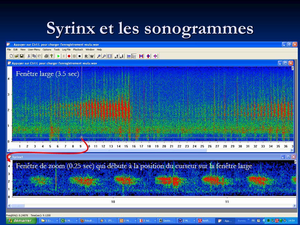 Syrinx et les sonogrammes Fenêtre large (3.5 sec) Fenêtre de zoom (0.25 sec) qui débute à la position du curseur sur la fenêtre large