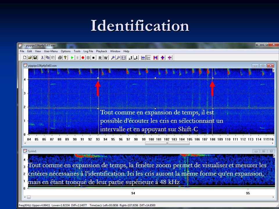 Identification Tout comme en expansion de temps, il est possible découter les cris en sélectionnant un intervalle et en appuyant sur Shift-C Tout comme en expansion de temps, la fenêtre zoom permet de visualiser et mesurer les critères nécessaires à lidentification.