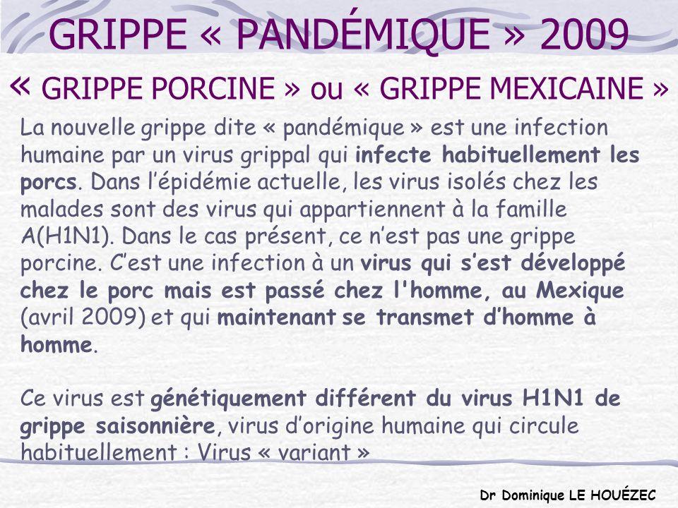 RECOMMANDATIONS DES «EXPERTS» Taux d attaque = 43 % population Entre 6000 et 94000 décès Parallèle avec grippe aviaire Mutations, combinaison avec grippe aviaire Plusieurs vagues Passage en « phase 6 » du plan pandémie pour l OMS en juin 2009 Fabrication dans l urgence de vaccins pandémiques sur le modèle des vaccins de la grippe aviaire.