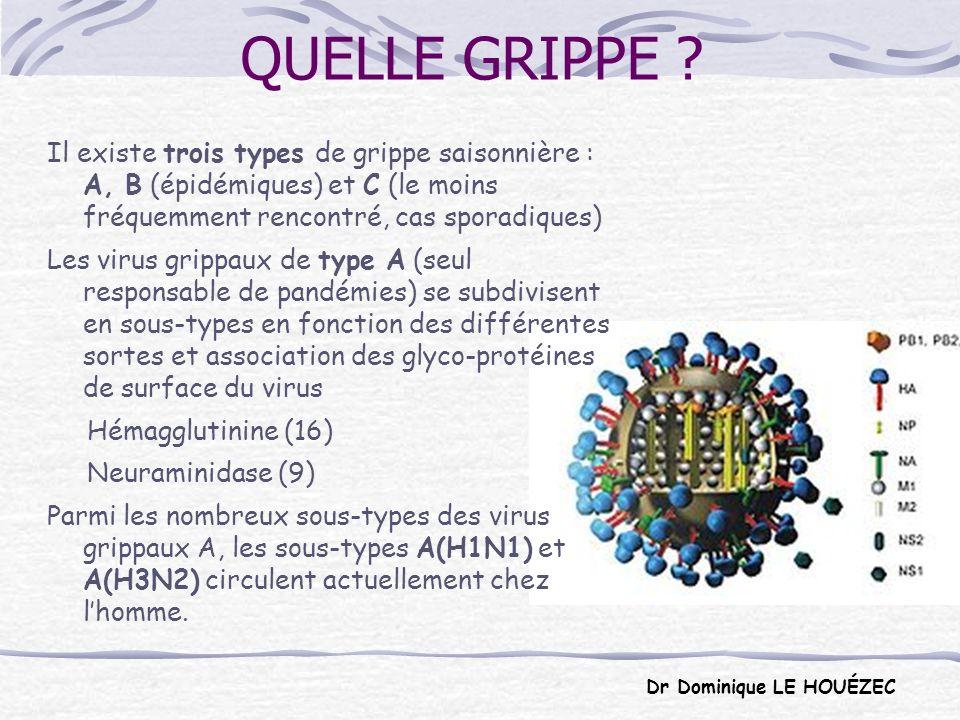 Les virus grippaux se caractérisent par leurs fréquentes mutations.