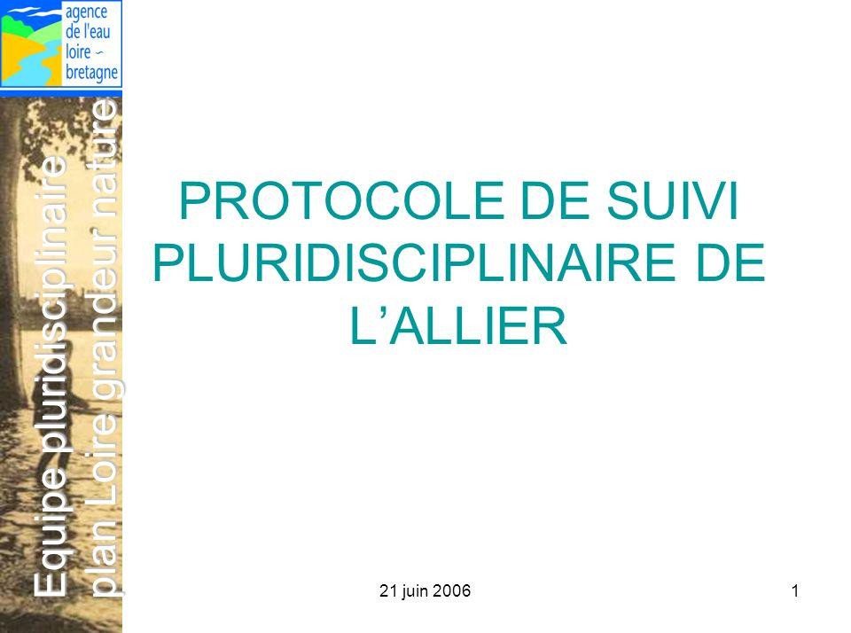 21 juin 20061 Equipe pluridisciplinaire plan Loire grandeur nature PROTOCOLE DE SUIVI PLURIDISCIPLINAIRE DE LALLIER