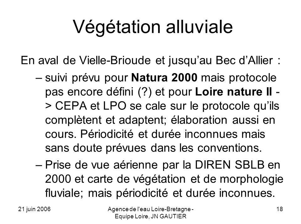 21 juin 2006Agence de l eau Loire-Bretagne - Equipe Loire, JN GAUTIER 18 Végétation alluviale En aval de Vielle-Brioude et jusquau Bec dAllier : –suivi prévu pour Natura 2000 mais protocole pas encore défini ( ) et pour Loire nature II - > CEPA et LPO se cale sur le protocole quils complètent et adaptent; élaboration aussi en cours.