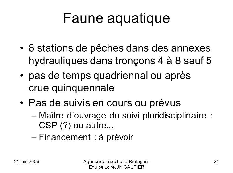 21 juin 2006Agence de l eau Loire-Bretagne - Equipe Loire, JN GAUTIER 24 Faune aquatique 8 stations de pêches dans des annexes hydrauliques dans tronçons 4 à 8 sauf 5 pas de temps quadriennal ou après crue quinquennale Pas de suivis en cours ou prévus –Maître douvrage du suivi pluridisciplinaire : CSP ( ) ou autre...
