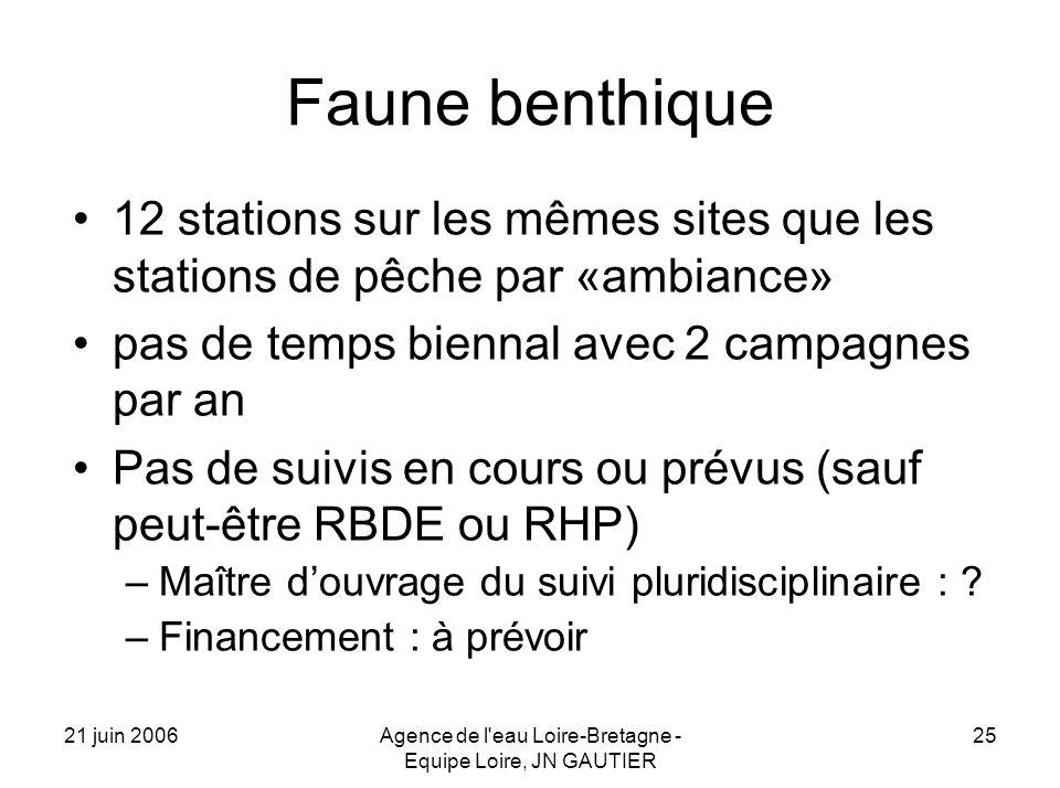 21 juin 2006Agence de l eau Loire-Bretagne - Equipe Loire, JN GAUTIER 25 Faune benthique 12 stations sur les mêmes sites que les stations de pêche par «ambiance» pas de temps biennal avec 2 campagnes par an Pas de suivis en cours ou prévus (sauf peut-être RBDE ou RHP) –Maître douvrage du suivi pluridisciplinaire : .