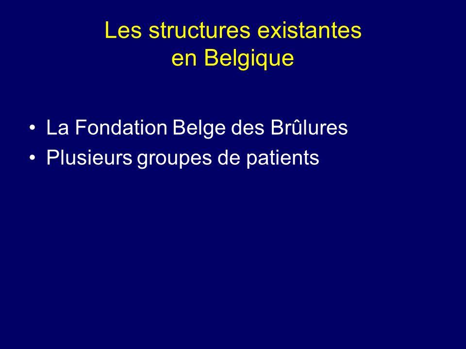 Les structures existantes en Belgique La Fondation Belge des Brûlures Plusieurs groupes de patients