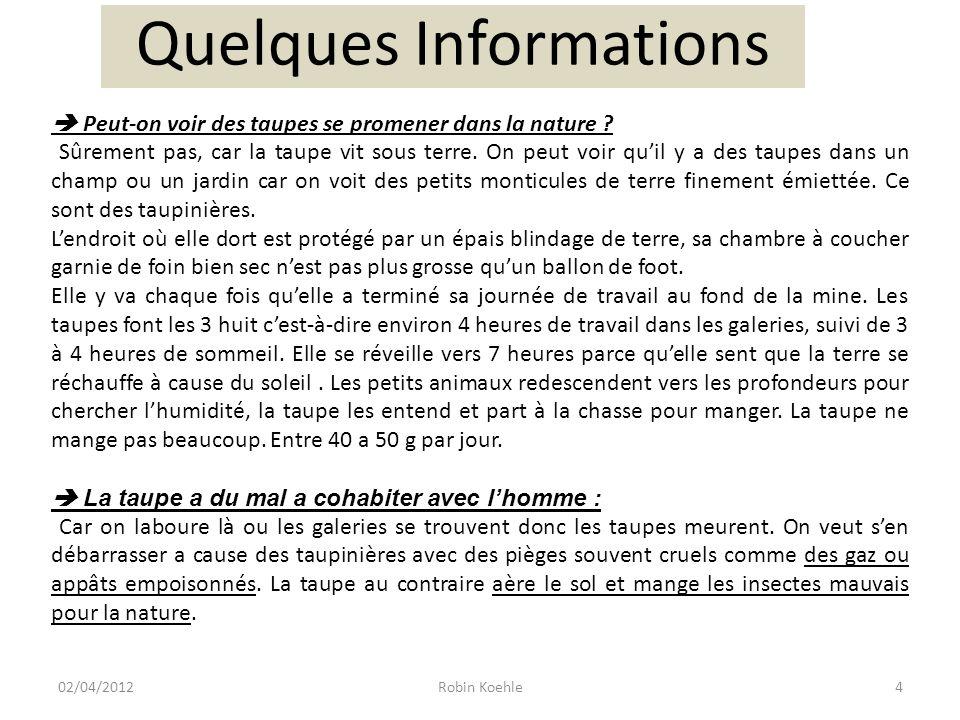 5Robin Koehle02/04/2012 Alors sauvons la taupe !!!