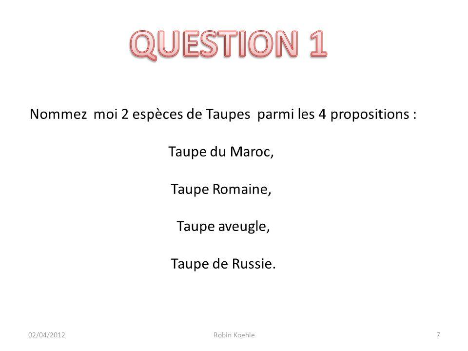 8 Nommez moi 2 espèces de Taupes parmi les 4 propositions : Taupe du Maroc, Taupe Romaine, Taupe aveugle, Taupe de Russie.