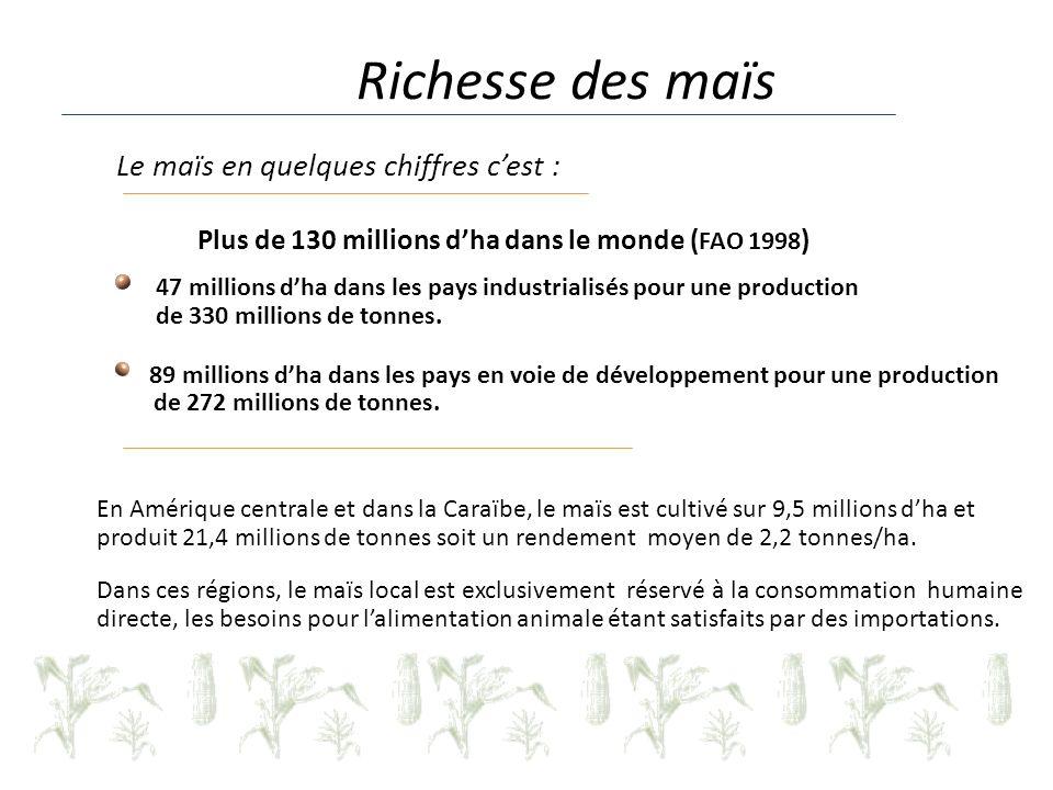 Le maïs en quelques chiffres cest : Plus de 130 millions dha dans le monde ( FAO 1998 ) 47 millions dha dans les pays industrialisés pour une production de 330 millions de tonnes.
