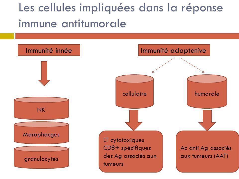 Les cellules impliquées dans la réponse immune antitumorale Immunité innée NK Marophacges granulocytes Immunité adaptative cellulairehumorale LT cytot