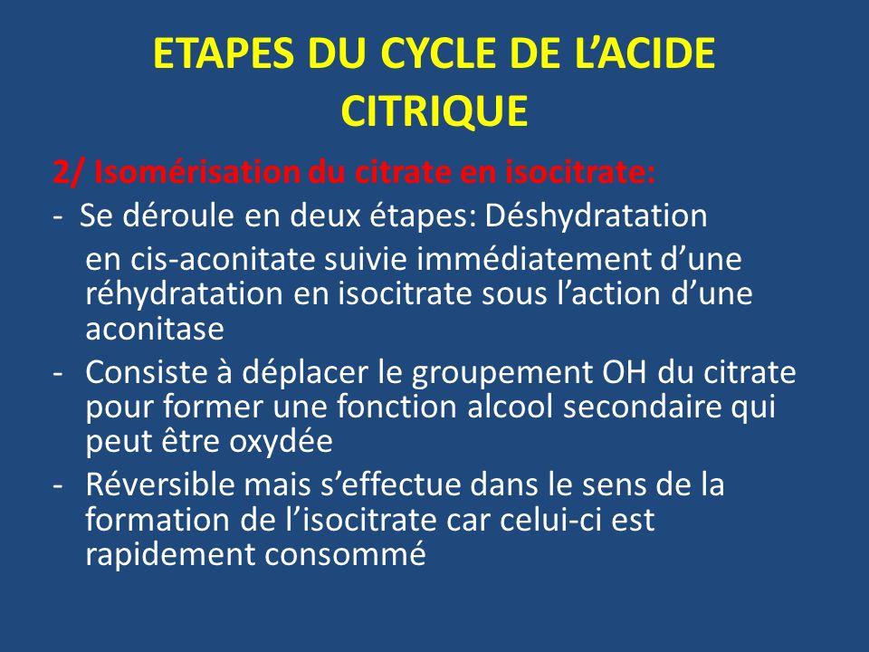 2/ Isomérisation du citrate en isocitrate: - Se déroule en deux étapes: Déshydratation en cis-aconitate suivie immédiatement dune réhydratation en iso