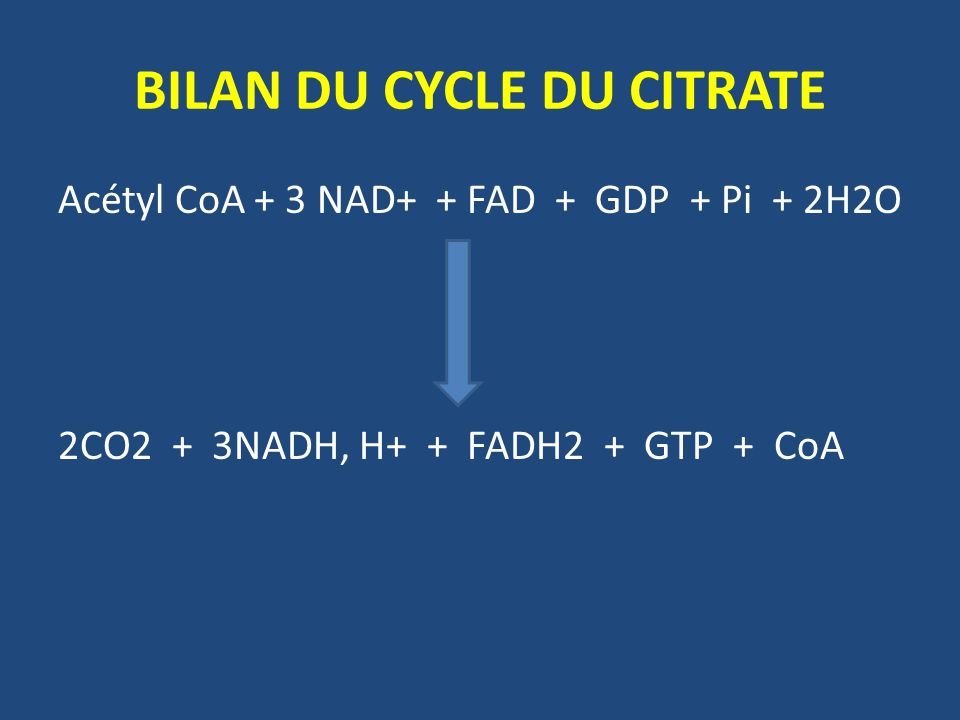 BILAN DU CYCLE DU CITRATE Acétyl CoA + 3 NAD+ + FAD + GDP + Pi + 2H2O 2CO2 + 3NADH, H+ + FADH2 + GTP + CoA