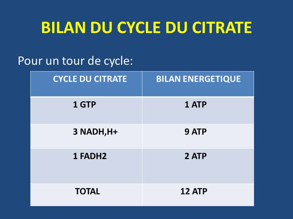BILAN DU CYCLE DU CITRATE Pour un tour de cycle: CYCLE DU CITRATE BILAN ENERGETIQUE 1 GTP 1 ATP 3 NADH,H+ 9 ATP 1 FADH2 2 ATP TOTAL 12 ATP