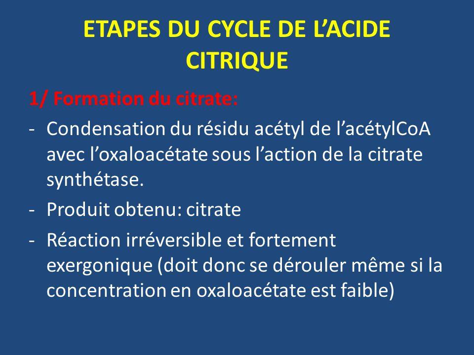 ETAPES DU CYCLE DE LACIDE CITRIQUE 1/ Formation du citrate: -Condensation du résidu acétyl de lacétylCoA avec loxaloacétate sous laction de la citrate