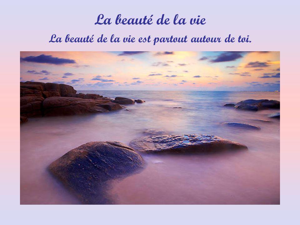 La beauté de la vie est partout autour de toi. La beauté de la vie