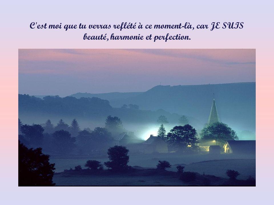 C est moi que tu verras reflété à ce moment-là, car JE SUIS beauté, harmonie et perfection.