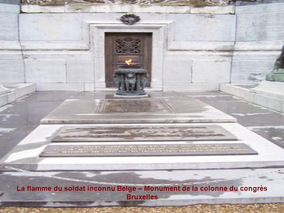 Histoire du soldat inconnu Belge Le soldat inconnu Belge a été inhumé au pied de la colonne entre les deux lions, le 11 novembre 1922. Suivant lexempl