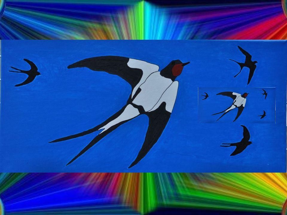 Adieux bleuets et primevères Tous les oiseaux ont encore faim