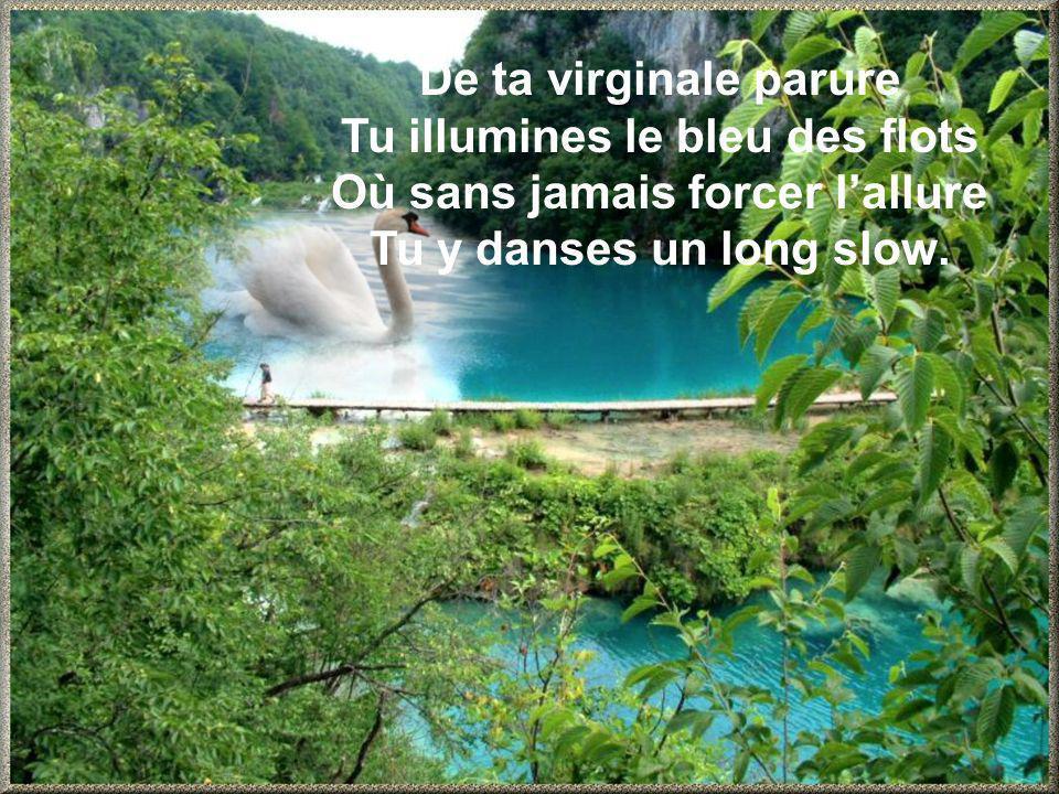De ta virginale parure Tu illumines le bleu des flots Où sans jamais forcer lallure Tu y danses un long slow.