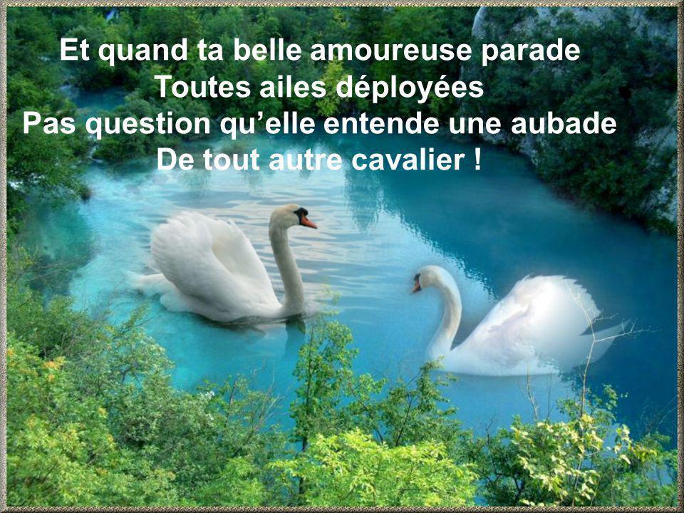 Et quand ta belle amoureuse parade Toutes ailes déployées Pas question quelle entende une aubade De tout autre cavalier !