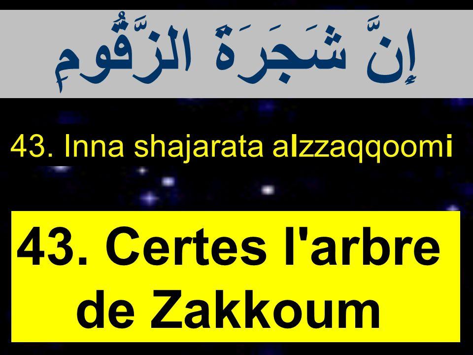 43. Inna shajarata alzzaqqoomi 43. Certes l'arbre de Zakkoum إِنَّ شَجَرَةَ الزَّقُّومِ