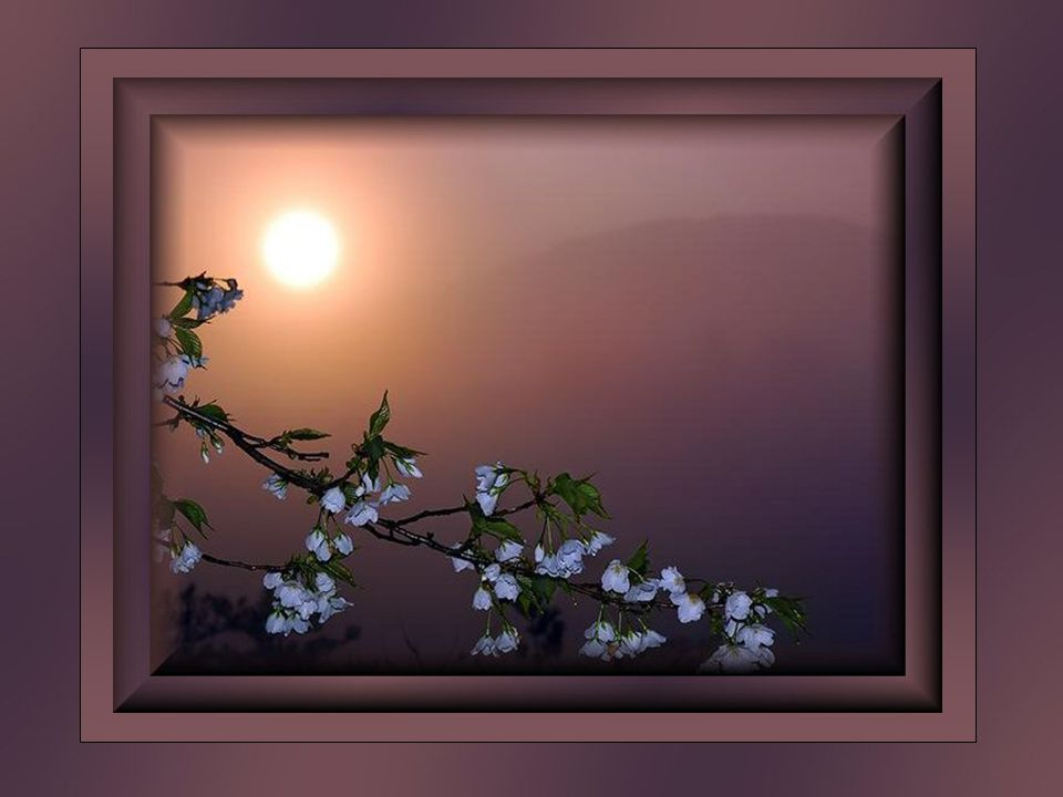 Être un instrument de paix, est tout simplement dégager de l énergie créatrice.