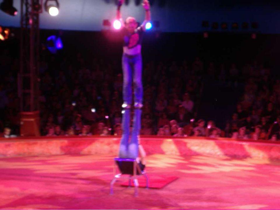 « Les chats ont fait des acrobaties impressionnantes, on aurait dit quils faisaient des sacrifices pour leur maître.