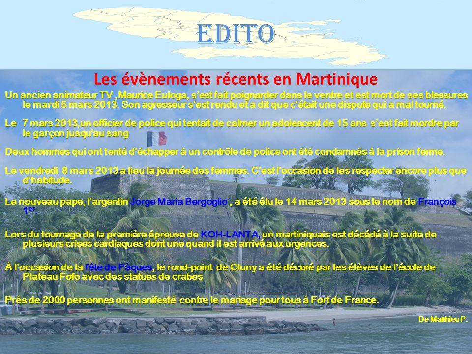 Bienvenue…chez vous ! Sommaire Sommaire EDITO p.33 LA RUBRIQUE EUROPEENNE Rubrique germanique p.44 Rubrique espagnole p.55 LA RUBRIQUE ECOLO p.66 AU F