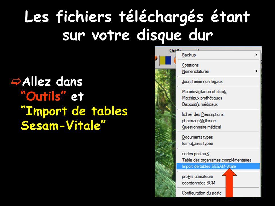 Les fichiers téléchargés étant sur votre disque dur Allez dans Outils et Import de tables Sesam-Vitale