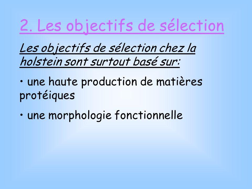 2. Les objectifs de sélection Les objectifs de sélection chez la holstein sont surtout basé sur: une haute production de matières protéiques une morph