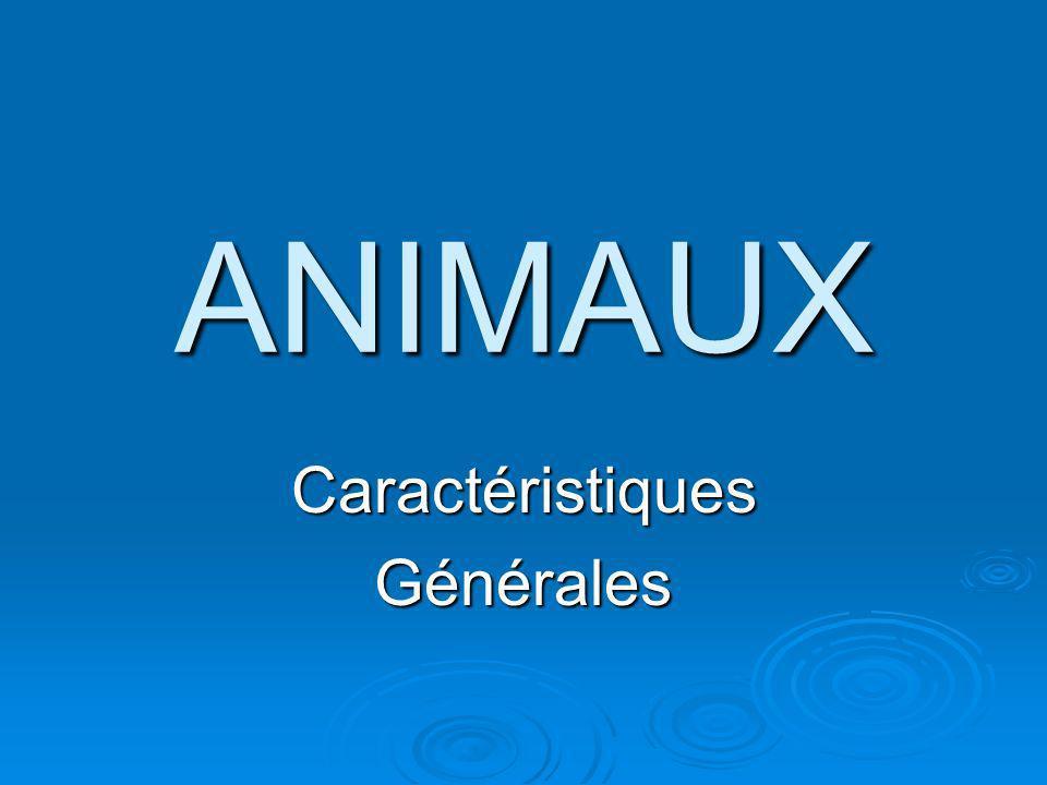 ANIMAUX CaractéristiquesGénérales