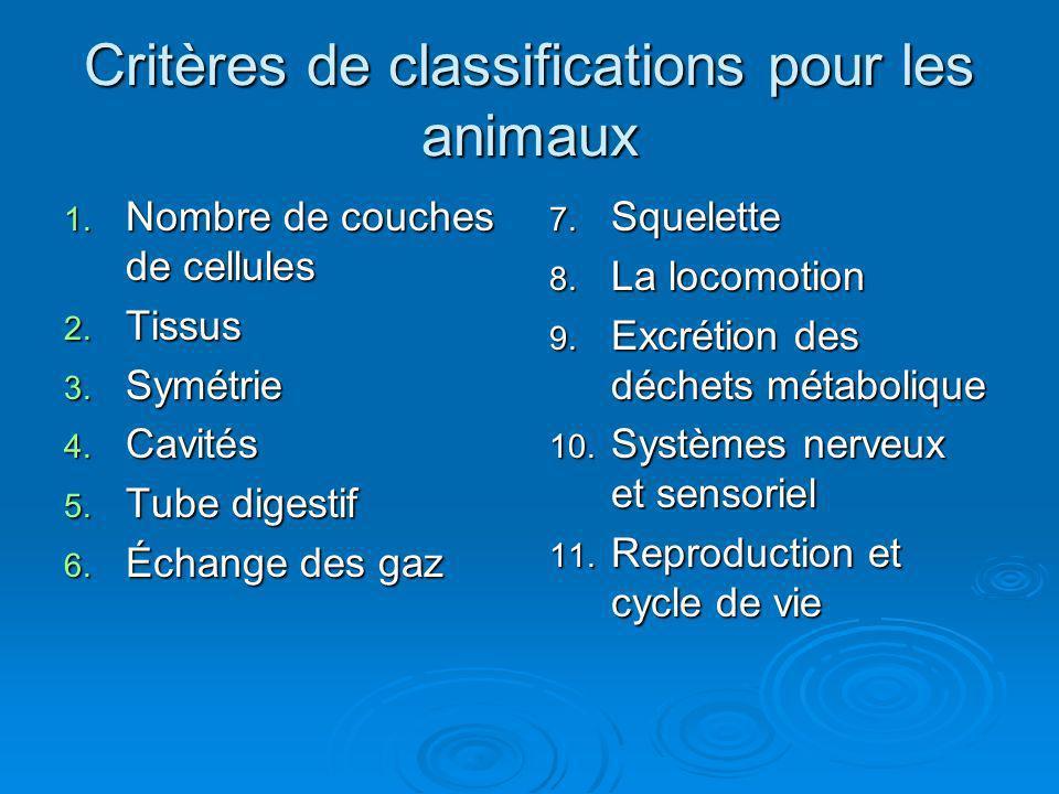Critères de classifications pour les animaux 1. Nombre de couches de cellules 2. Tissus 3. Symétrie 4. Cavités 5. Tube digestif 6. Échange des gaz 7.