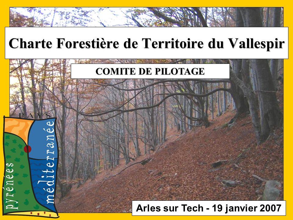 Arles sur Tech - 19 janvier 2007 Charte Forestière de Territoire du Vallespir COMITE DE PILOTAGE