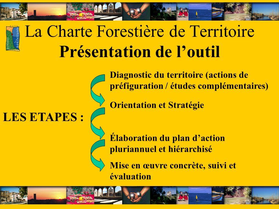 La Charte Forestière de Territoire Présentation de loutil LES ETAPES : Diagnostic du territoire (actions de préfiguration / études complémentaires) Or
