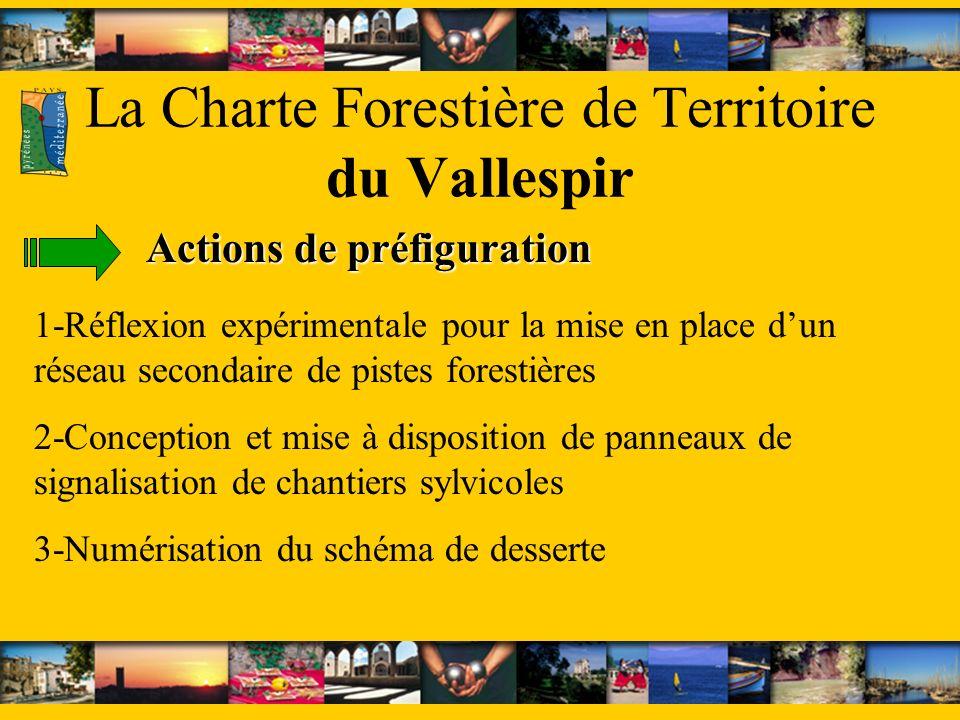 La Charte Forestière de Territoire du Vallespir Actions de préfiguration 1-Réflexion expérimentale pour la mise en place dun réseau secondaire de pistes forestières 2-Conception et mise à disposition de panneaux de signalisation de chantiers sylvicoles 3-Numérisation du schéma de desserte
