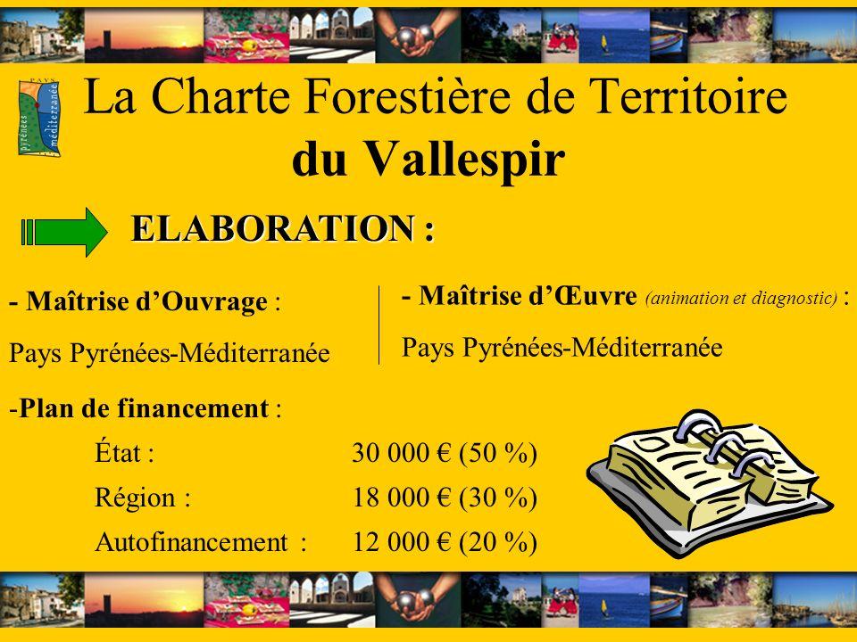 La Charte Forestière de Territoire du Vallespir - Maîtrise dOuvrage : Pays Pyrénées-Méditerranée ELABORATION : -Plan de financement : État : 30 000 (5