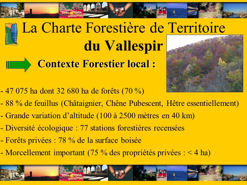 La Charte Forestière de Territoire du Vallespir - 88 % de feuillus (Châtaignier, Chêne Pubescent, Hêtre essentiellement) - Diversité écologique : 77 stations forestières recensées - 47 075 ha dont 32 680 ha de forêts (70 %) - Forêts privées : 78 % de la surface boisée - Morcellement important (75 % des propriétés privées : < 4 ha) Contexte Forestier local : - Grande variation daltitude (100 à 2500 mètres en 40 km)