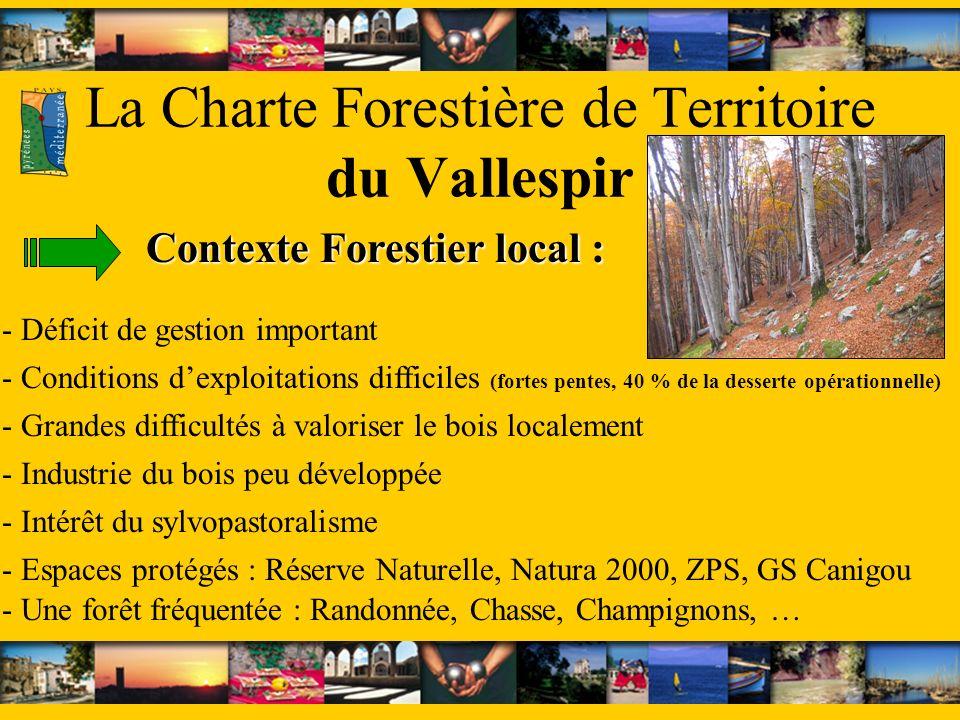 La Charte Forestière de Territoire du Vallespir - Grandes difficultés à valoriser le bois localement - Déficit de gestion important - Industrie du boi