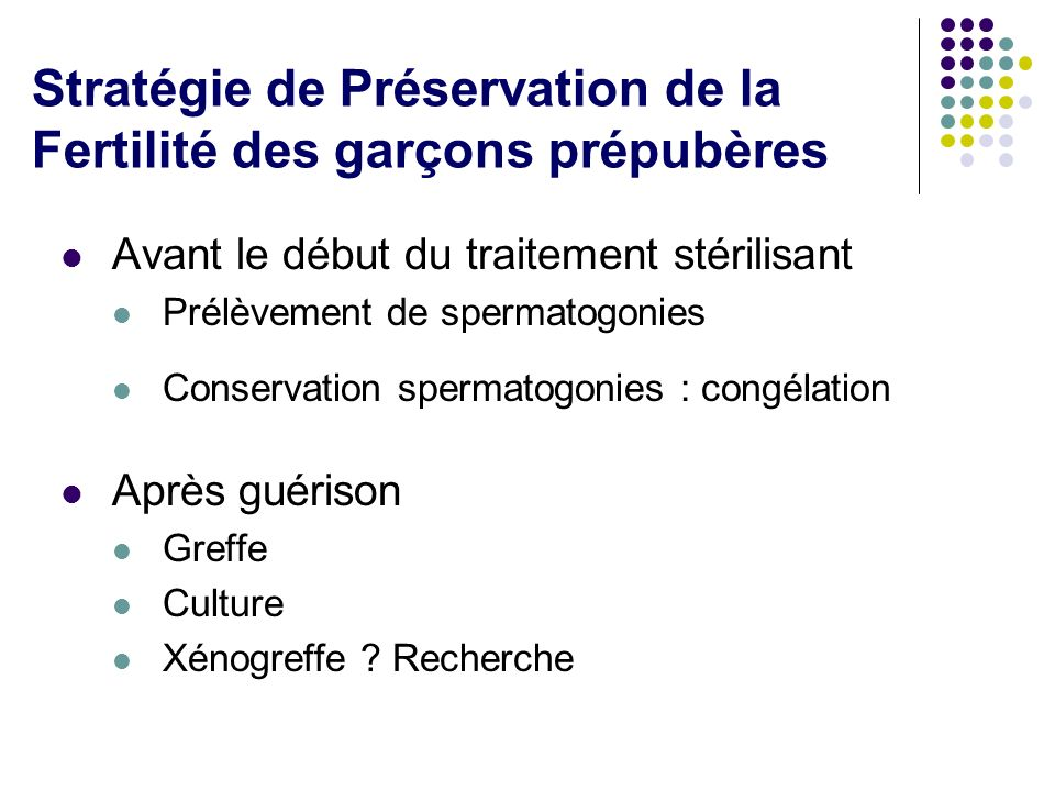 Stratégie de Préservation de la Fertilité des garçons prépubères Avant le début du traitement stérilisant Prélèvement de spermatogonies Conservation s