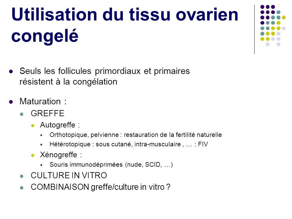 Utilisation du tissu ovarien congelé Seuls les follicules primordiaux et primaires résistent à la congélation Maturation : GREFFE Autogreffe : Orthoto