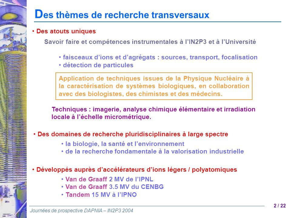 2 / 22 Journées de prospective DAPNIA – IN2P3 2004 D es thèmes de recherche transversaux Application de techniques issues de la Physique Nucléaire à l