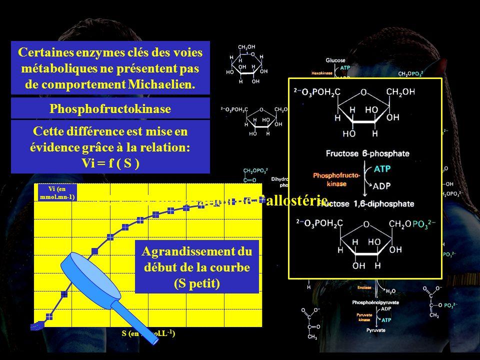 4.2.1 allost Certaines enzymes clés des voies métaboliques ne présentent pas de comportement Michaelien.