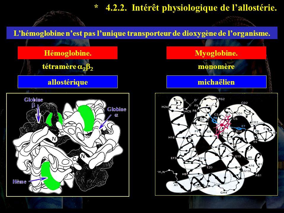 4.2.2 suite * 4.2.2. Intérêt physiologique de lallostérie. Lhémoglobine nest pas lunique transporteur de dioxygène de lorganisme. Hémoglobine.Myoglobi