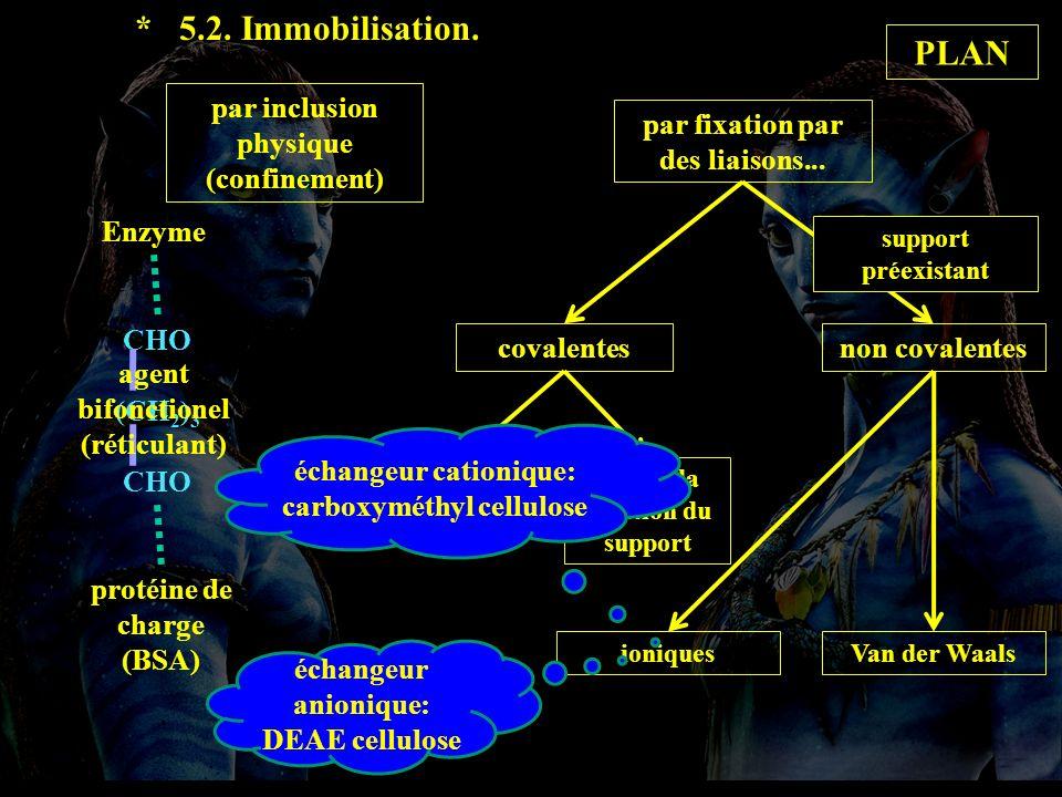 5.2 immobil suite * 5.2. Immobilisation. par inclusion physique (confinement) par fixation par des liaisons... covalentesnon covalentes support préexi