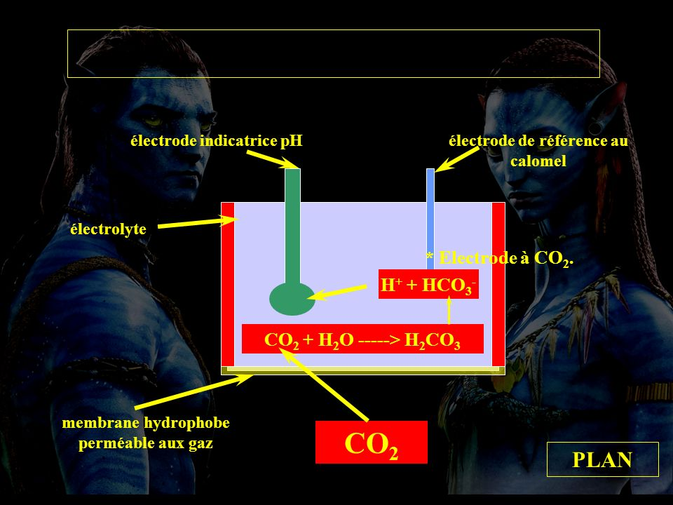 Electrode à CO2 membrane hydrophobe perméable aux gaz CO 2 CO 2 + H 2 O -----> H 2 CO 3 H + + HCO 3 - électrode indicatrice pHélectrode de référence au calomel électrolyte PLAN * Electrode à CO 2.