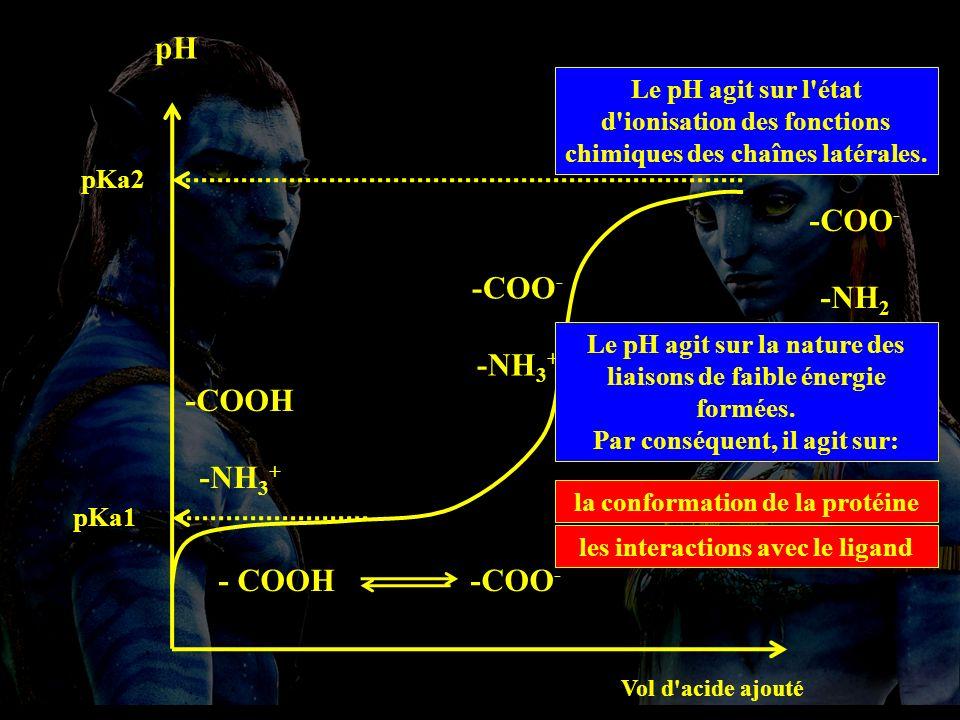 t Pdt pH 5 pH 5,5 pH 6.5 pH 7 pH 6 pH 4 3.Les facteurs qui influencent l activité enzymatique.