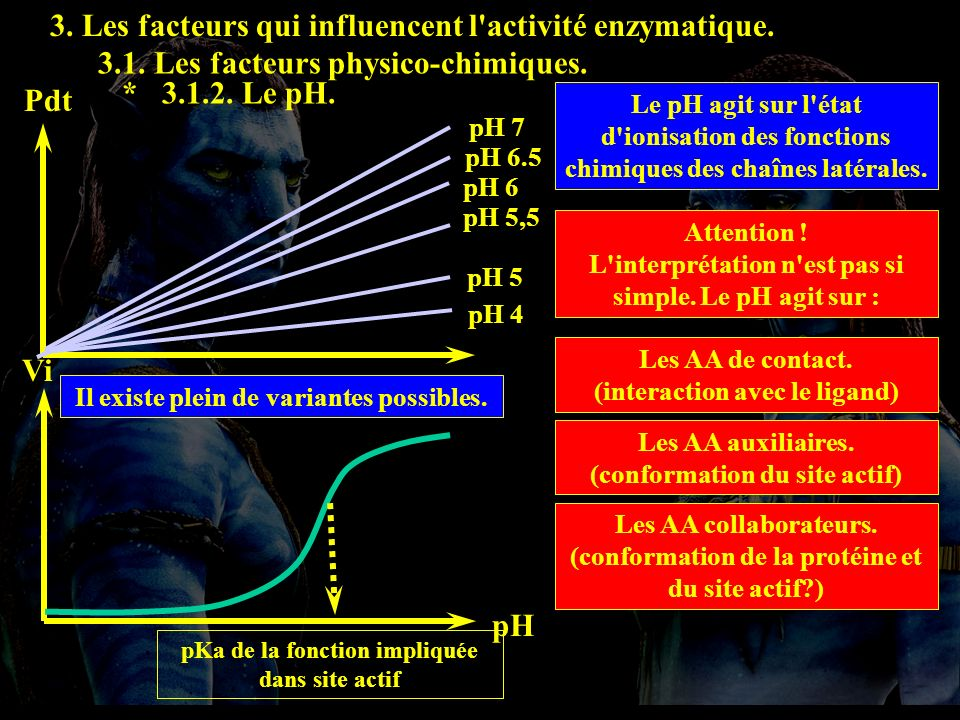 t Pdt pH 5 pH 5,5 pH 6.5 pH 7 pH 6 pH 4 pH Vi pKa de la fonction impliquée dans site actif 3. Les facteurs qui influencent l'activité enzymatique. 3.1