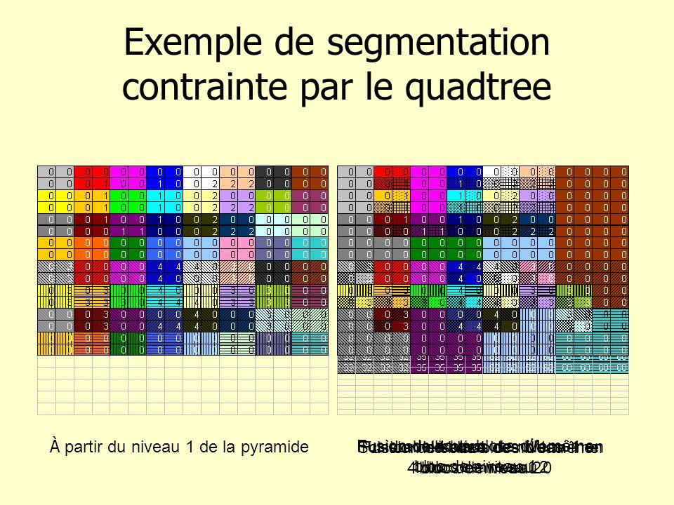 Exemple de segmentation contrainte par le quadtree À partir du niveau 1 de la pyramide Fusion de 4 blocs de niveau 1 en 1 bloc de niveau 2 Scission de