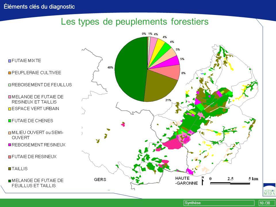 10 /38 Synthèse Éléments clés du diagnostic Les types de peuplements forestiers